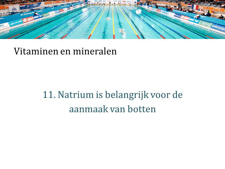 Vitaminen en mineralen 11. Natrium is belangrijk voor de aanmaak van botten