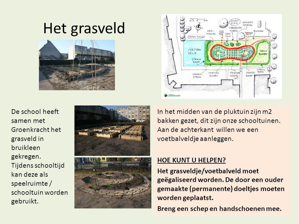 Het grasveld De school heeft samen met Groenkracht het grasveld in bruikleen gekregen. Tijdens schooltijd kan deze als speelruimte / schooltuin worden