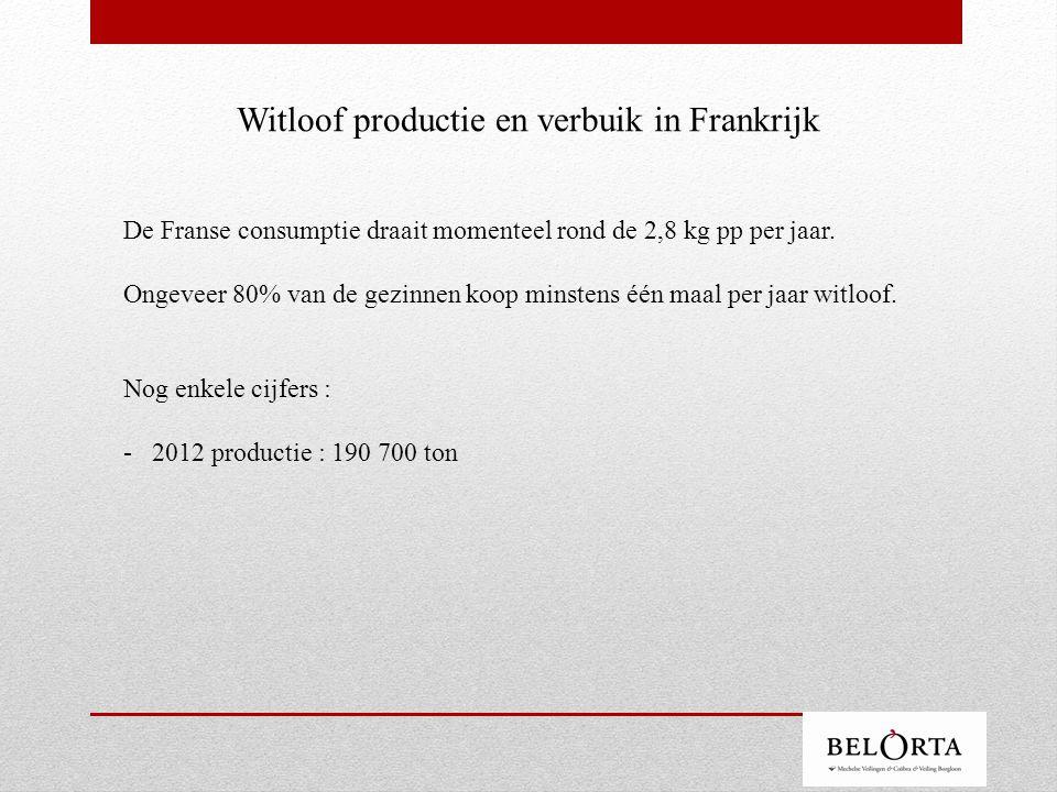 Witloof productie en verbuik in Frankrijk De Franse consumptie draait momenteel rond de 2,8 kg pp per jaar.