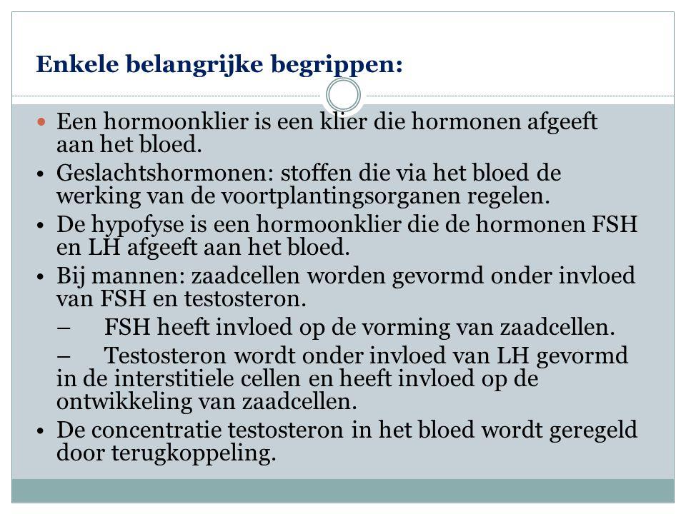 Enkele belangrijke begrippen:  Een hormoonklier is een klier die hormonen afgeeft aan het bloed. •Geslachtshormonen: stoffen die via het bloed de wer