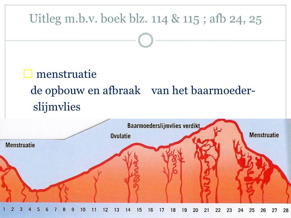 Uitleg m.b.v. boek blz. 114 & 115 ; afb 24, 25  menstruatie de opbouw en afbraak van het baarmoeder- slijmvlies