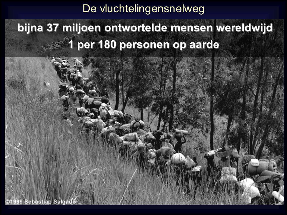De vluchtelingensnelweg bijna 37 miljoen ontwortelde mensen wereldwijd bijna 37 miljoen ontwortelde mensen wereldwijd 1 per 180 personen op aarde