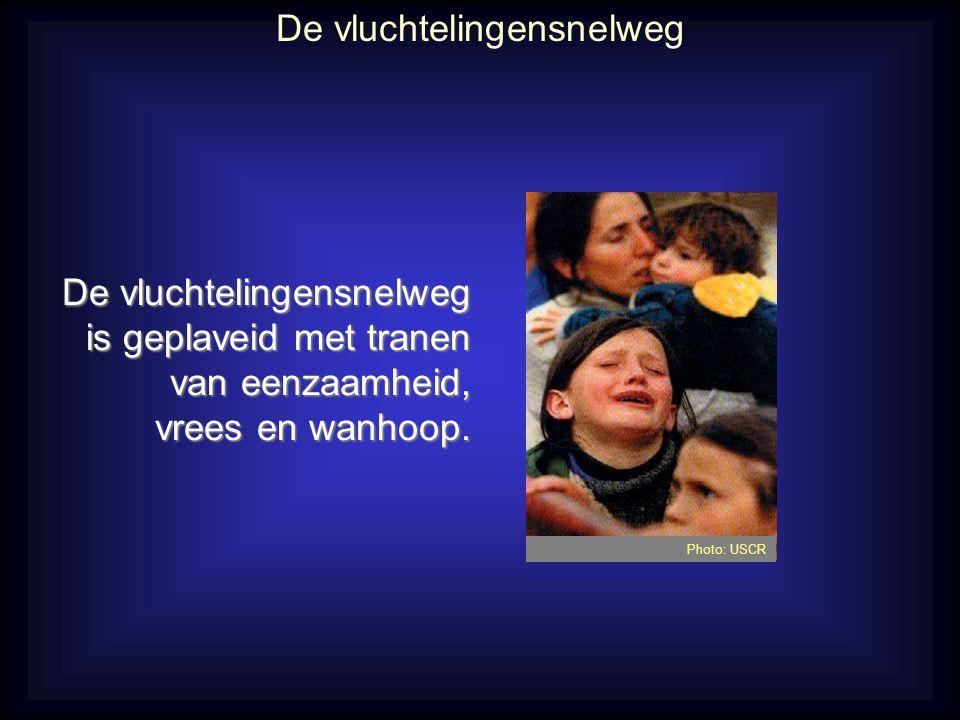 Bid voor vrijwilligers in ons land: •Dank voor de Vlaamse christenen die zich toegewijd inzetten om het Evangelie door te geven aan asielzoekers.