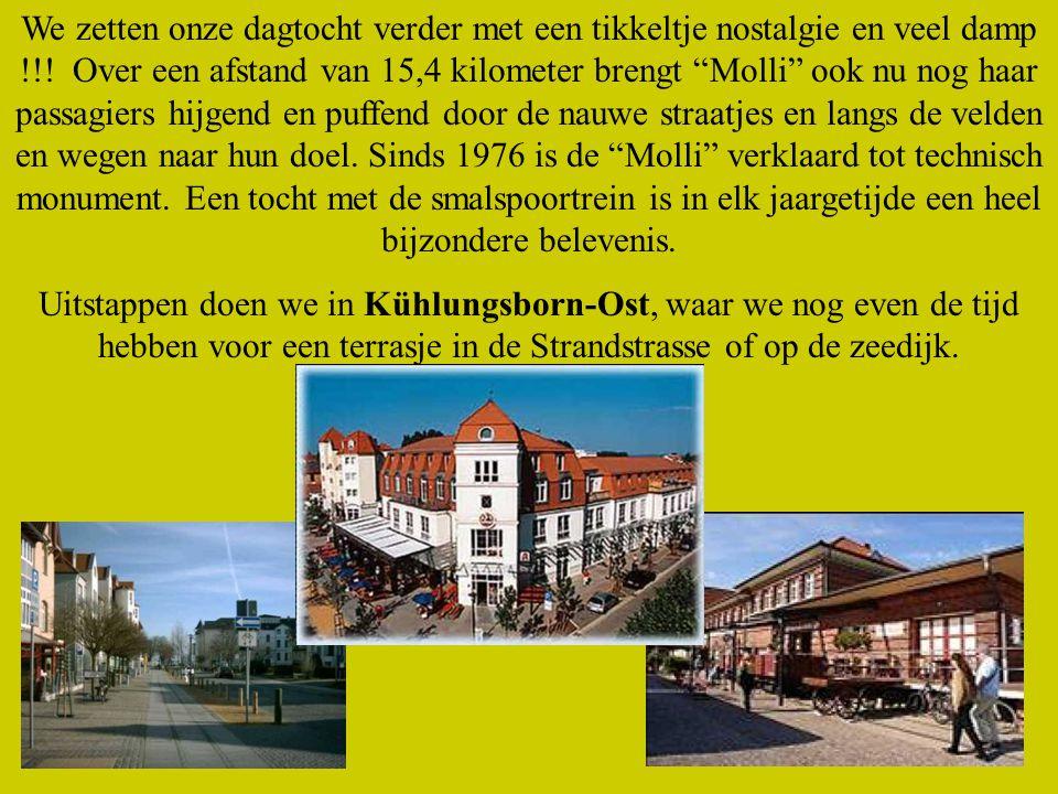 Namiddag: Bad Doberan, Molli, Kühlungsborn.Met onze eigen touringcar reizen we naar Bad Doberan.
