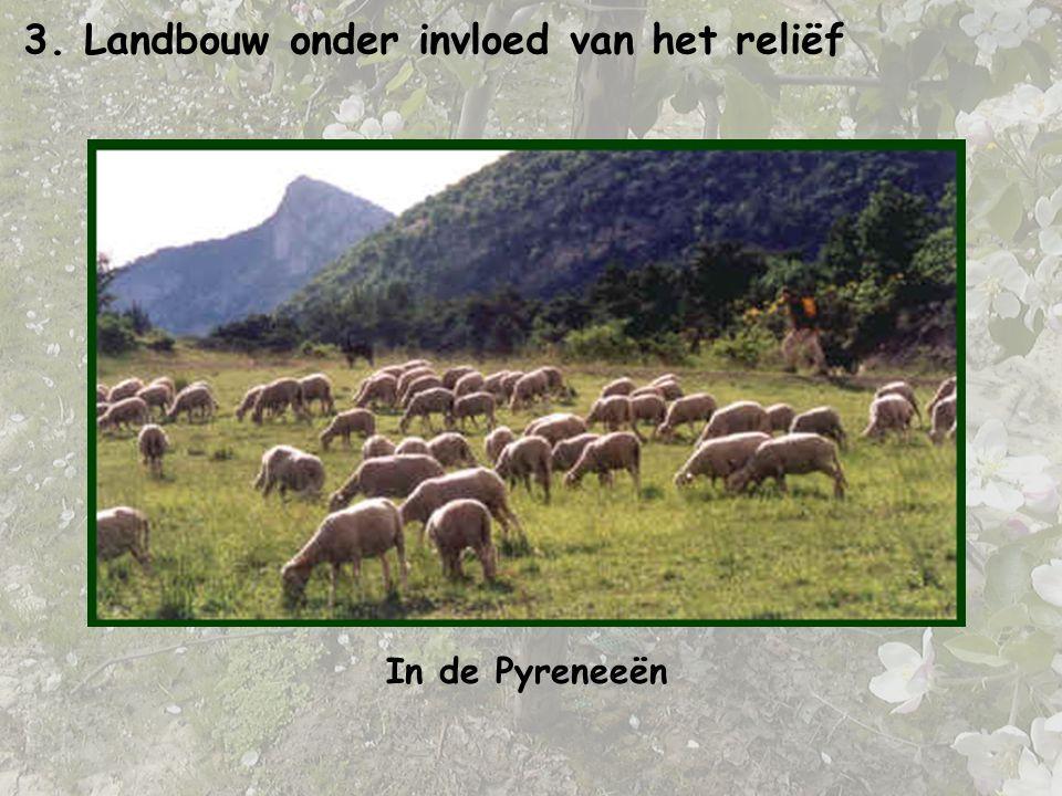 3. Landbouw onder invloed van het reliëf In de Pyreneeën
