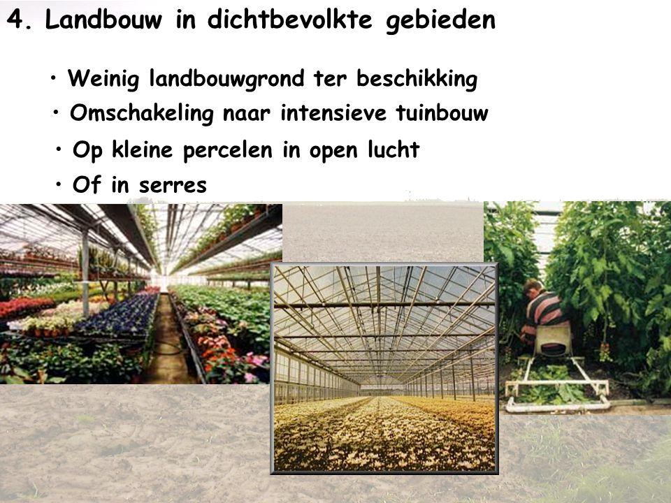 4. Landbouw in dichtbevolkte gebieden • Weinig landbouwgrond ter beschikking • Omschakeling naar intensieve tuinbouw • Op kleine percelen in open luch