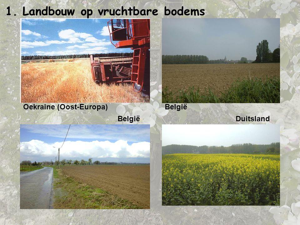 Oekraine (Oost-Europa) Duitsland België 1. Landbouw op vruchtbare bodems