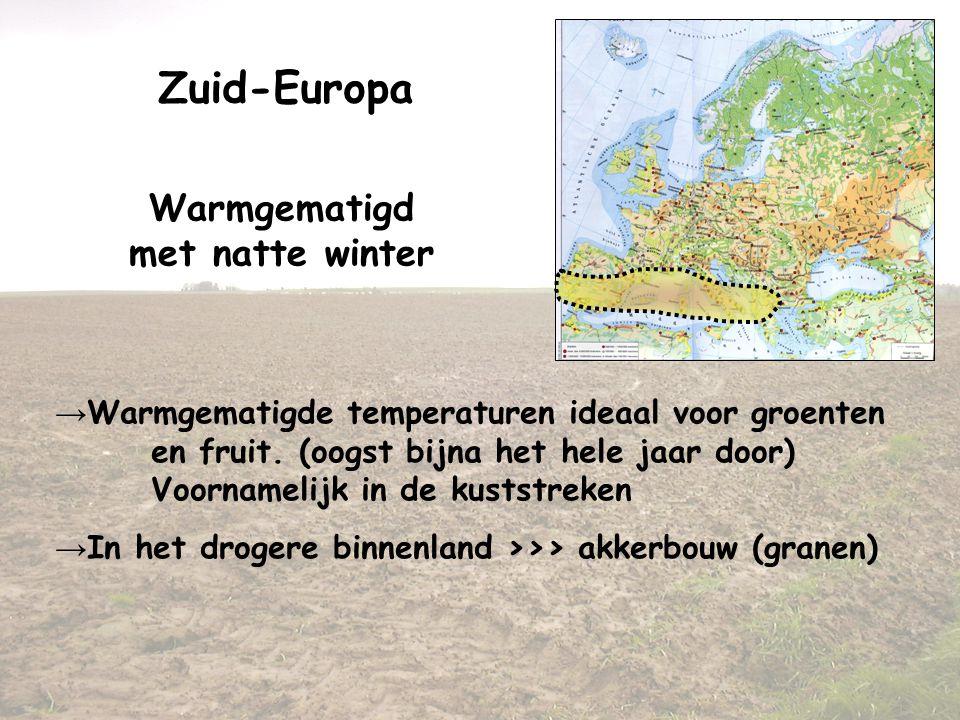 Zuid-Europa Warmgematigd met natte winter → Warmgematigde temperaturen ideaal voor groenten en fruit. (oogst bijna het hele jaar door) Voornamelijk in