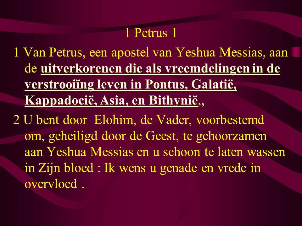 1 Petrus 1 1 Van Petrus, een apostel van Yeshua Messias, aan de uitverkorenen die als vreemdelingen in de verstrooiïng leven in Pontus, Galatië, Kappadocië, Asia, en Bithynië,, 2 U bent door Elohim, de Vader, voorbestemd om, geheiligd door de Geest, te gehoorzamen aan Yeshua Messias en u schoon te laten wassen in Zijn bloed : Ik wens u genade en vrede in overvloed.