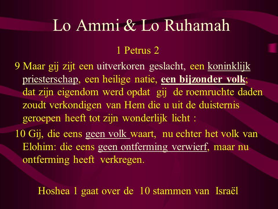 Lo Ammi & Lo Ruhamah 1 Petrus 2 9 Maar gij zijt een uitverkoren geslacht, een koninklijk priesterschap, een heilige natie, een bijzonder volk; dat zijn eigendom werd opdat gij de roemruchte daden zoudt verkondigen van Hem die u uit de duisternis geroepen heeft tot zijn wonderlijk licht : 10 Gij, die eens geen volk waart, nu echter het volk van Elohim: die eens geen ontferming verwierf, maar nu ontferming heeft verkregen.