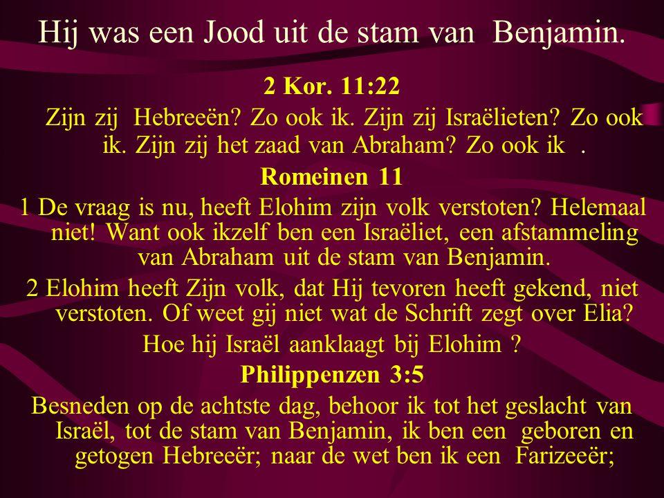 Hij was een Jood uit de stam van Benjamin. 2 Kor. 11:22 Zijn zij Hebreeën? Zo ook ik. Zijn zij Israëlieten? Zo ook ik. Zijn zij het zaad van Abraham?