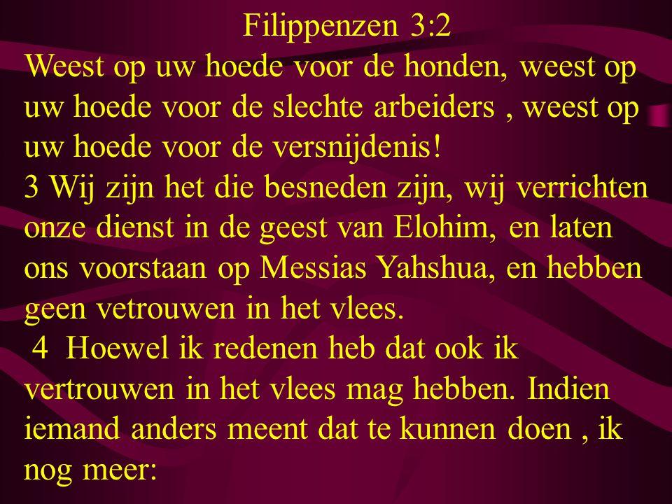 Filippenzen 3:2 Weest op uw hoede voor de honden, weest op uw hoede voor de slechte arbeiders, weest op uw hoede voor de versnijdenis! 3 Wij zijn het
