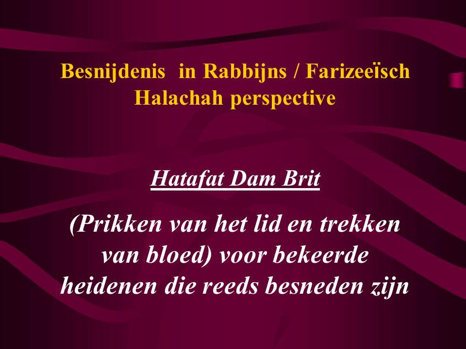 Besnijdenis in Rabbijns / Farizee ï sch Halachah perspective Hatafat Dam Brit (Prikken van het lid en trekken van bloed) voor bekeerde heidenen die reeds besneden zijn