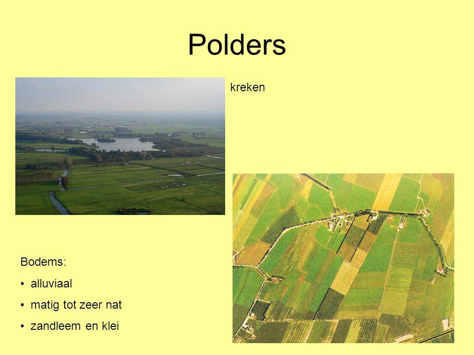 Polders kreken Bodems: • alluviaal • matig tot zeer nat • zandleem en klei