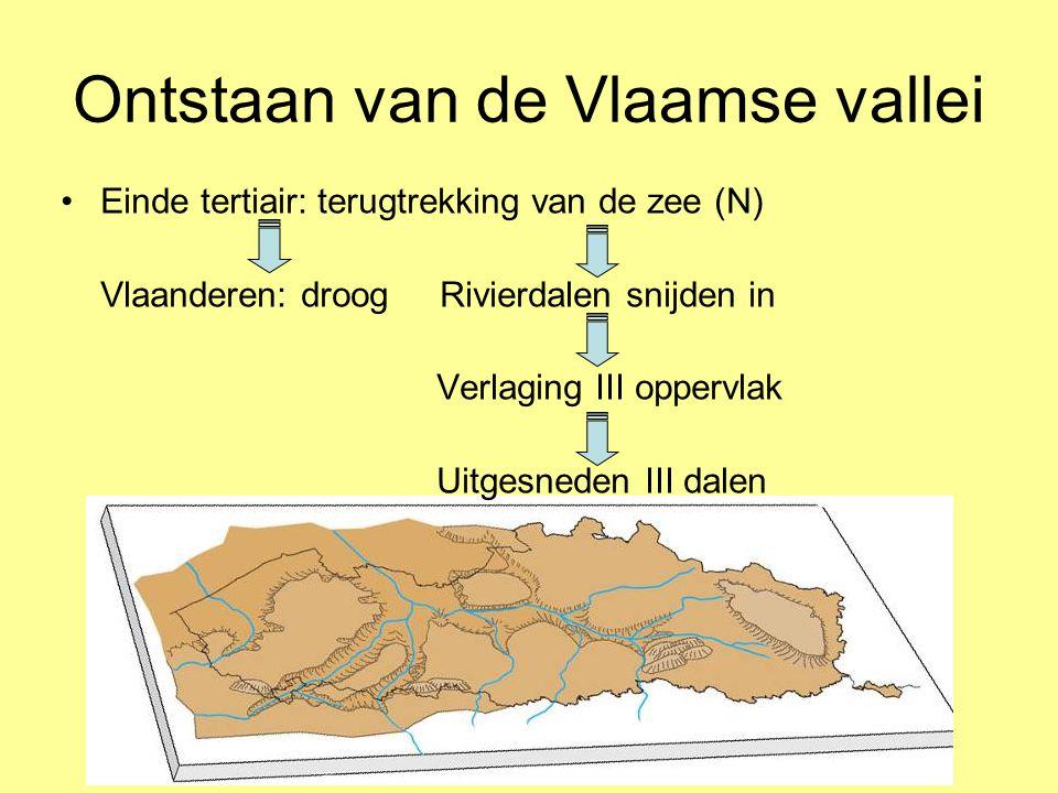 Ontstaan van de Vlaamse vallei •Einde tertiair: terugtrekking van de zee (N) Vlaanderen: droog Rivierdalen snijden in Verlaging III oppervlak Uitgesne