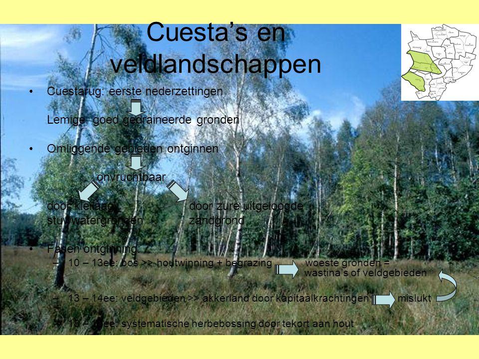 Cuesta's en veldlandschappen •Cuestarug: eerste nederzettingen Lemige, goed gedraineerde gronden •Omliggende gebieden ontginnen onvruchtbaar door klei