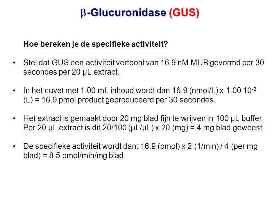 Hoe bereken je de specifieke activiteit? •Stel dat GUS een activiteit vertoont van 16.9 nM MUB gevormd per 30 secondes per 20 µL extract. •In het cuve