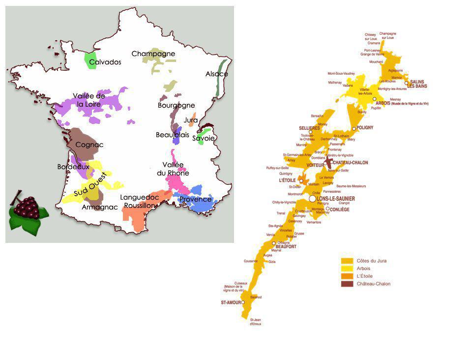 Inleiding • de Jura beschikt over een AOC wijnstreek of AOP • grote verscheidenheid aan gronden over een oppervlakte van 1850 ha • eerste AOC te Arbois in 1936 • De verschillende wijnen uit de Jura karakteriseren het beste de wijnstreek van de Jura: • 5 druivensoorten • 6 AOC • 200 professionele wijnbouwbedrijven • een rijk gamma van producten: niet-mousserende wijn via likeur- of digestiefwijnen tot mousserende wijn