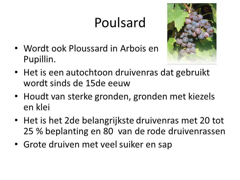 Poulsard • Wordt ook Ploussard in Arbois en Pupillin.