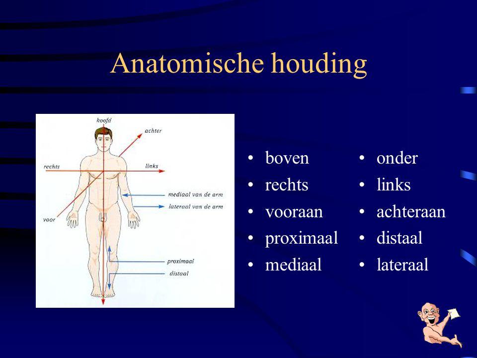 Hoofdstukken 1.Waar ligt watWaar ligt wat 2.Een overzicht van de lichaamsstelsels 1.Het zenuwstelselHet zenuwstelsel 2.Het ademhalings- stelselHet ade