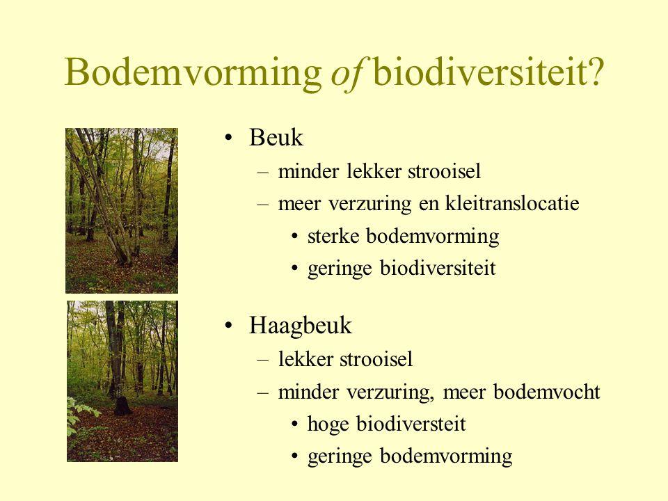 Bodemvorming of biodiversiteit? •Beuk –minder lekker strooisel –meer verzuring en kleitranslocatie •sterke bodemvorming •geringe biodiversiteit •Haagb