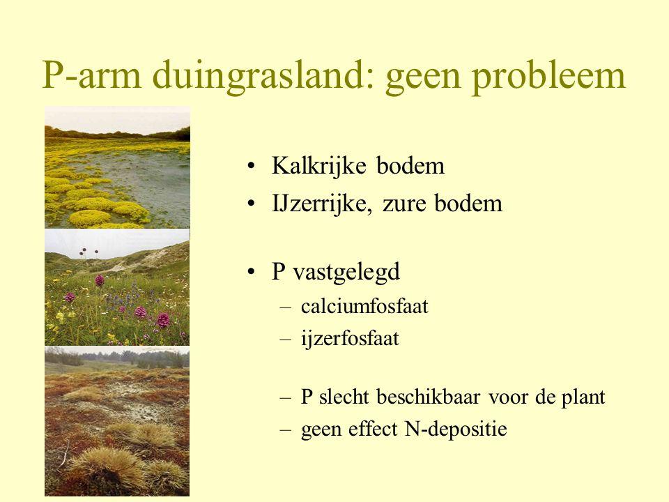 P-arm duingrasland: geen probleem •Kalkrijke bodem •IJzerrijke, zure bodem •P vastgelegd –calciumfosfaat –ijzerfosfaat –P slecht beschikbaar voor de p