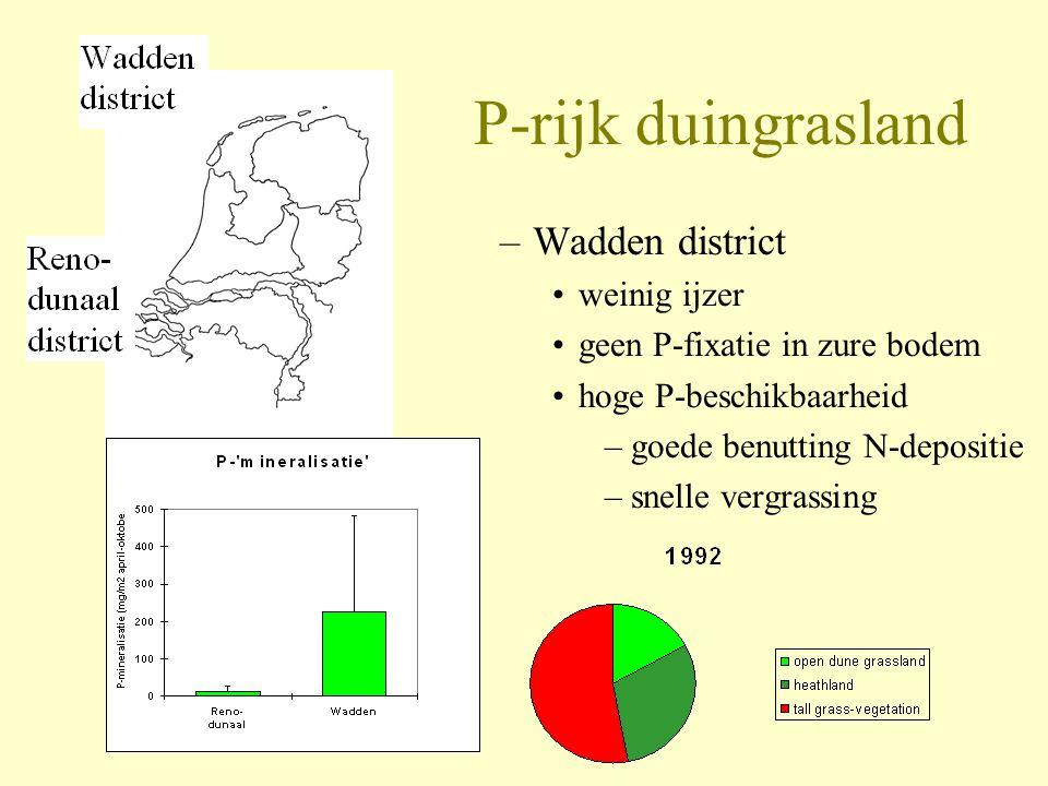 P-rijk duingrasland –Wadden district •weinig ijzer •geen P-fixatie in zure bodem •hoge P-beschikbaarheid –goede benutting N-depositie –snelle vergrass