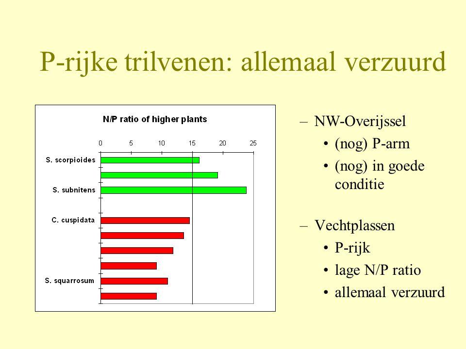 P-rijke trilvenen: allemaal verzuurd –NW-Overijssel •(nog) P-arm •(nog) in goede conditie –Vechtplassen •P-rijk •lage N/P ratio •allemaal verzuurd