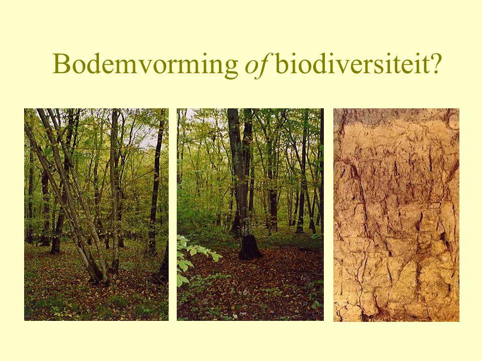 Bodemvorming of biodiversiteit?