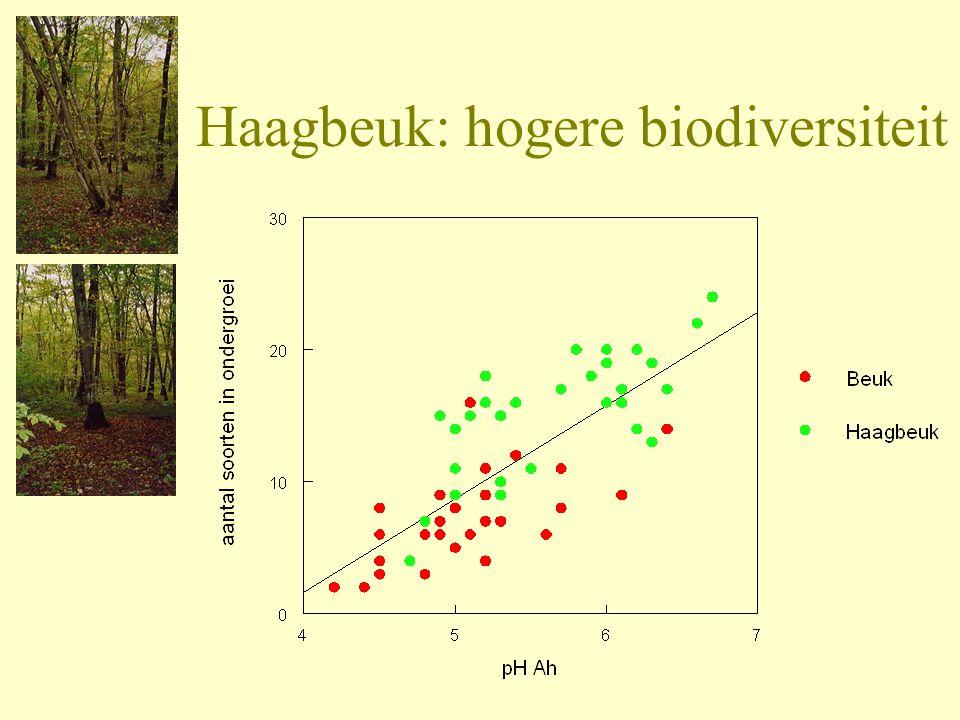 Haagbeuk: hogere biodiversiteit