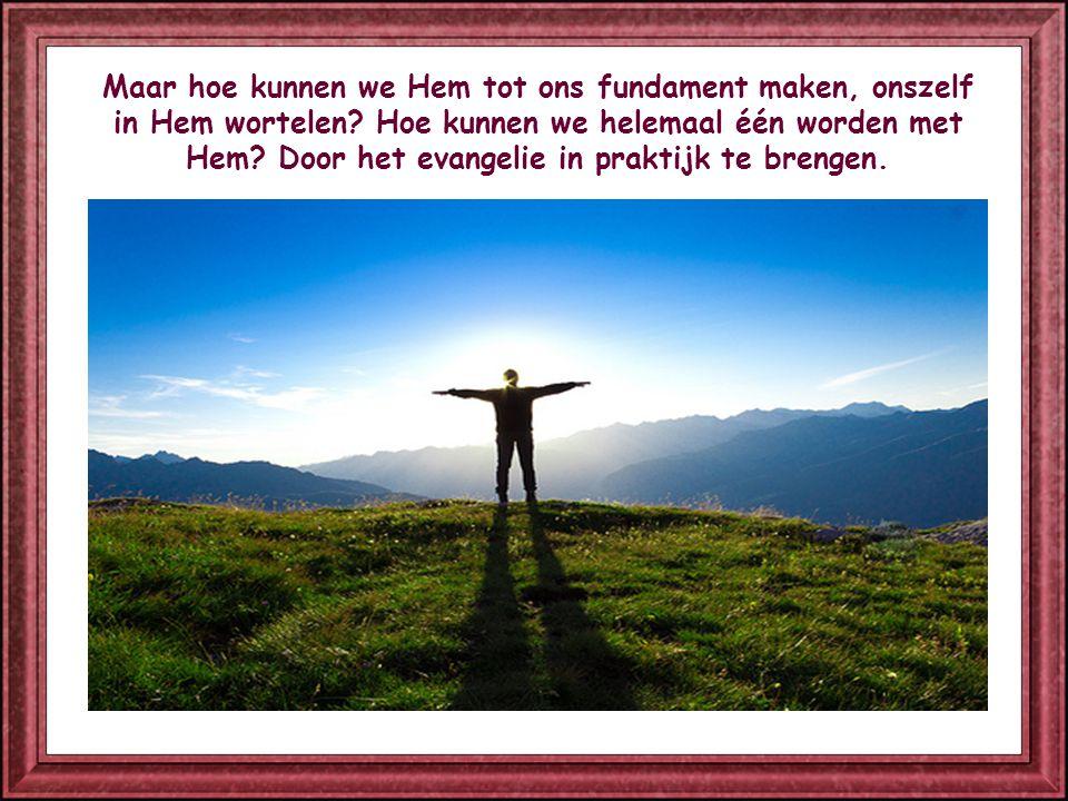 Ons leven op Christus funderen, betekent: één zijn met Hem, denken zoals Hij denkt, willen wat Hij wil, leven zoals Hij heeft geleefd.