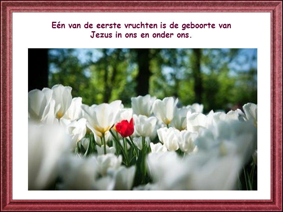 Zoals het lichaam ademt om te leven, zo leeft de ziel wanneer ze het Woord van God beleeft.
