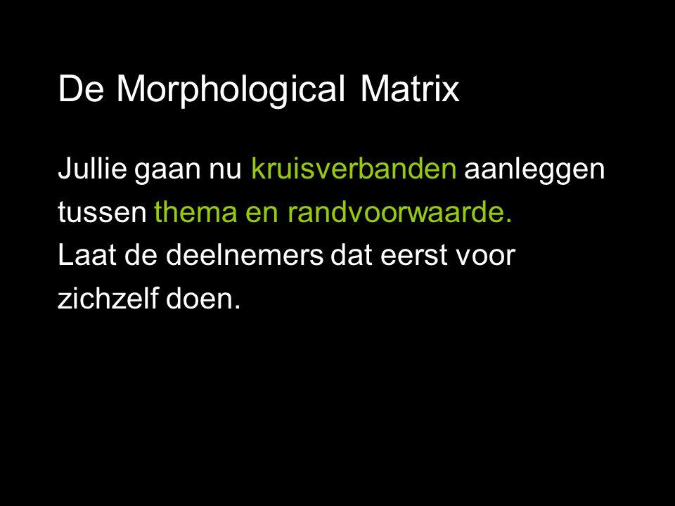 De Morphological Matrix Jullie gaan nu kruisverbanden aanleggen tussen thema en randvoorwaarde. Laat de deelnemers dat eerst voor zichzelf doen.