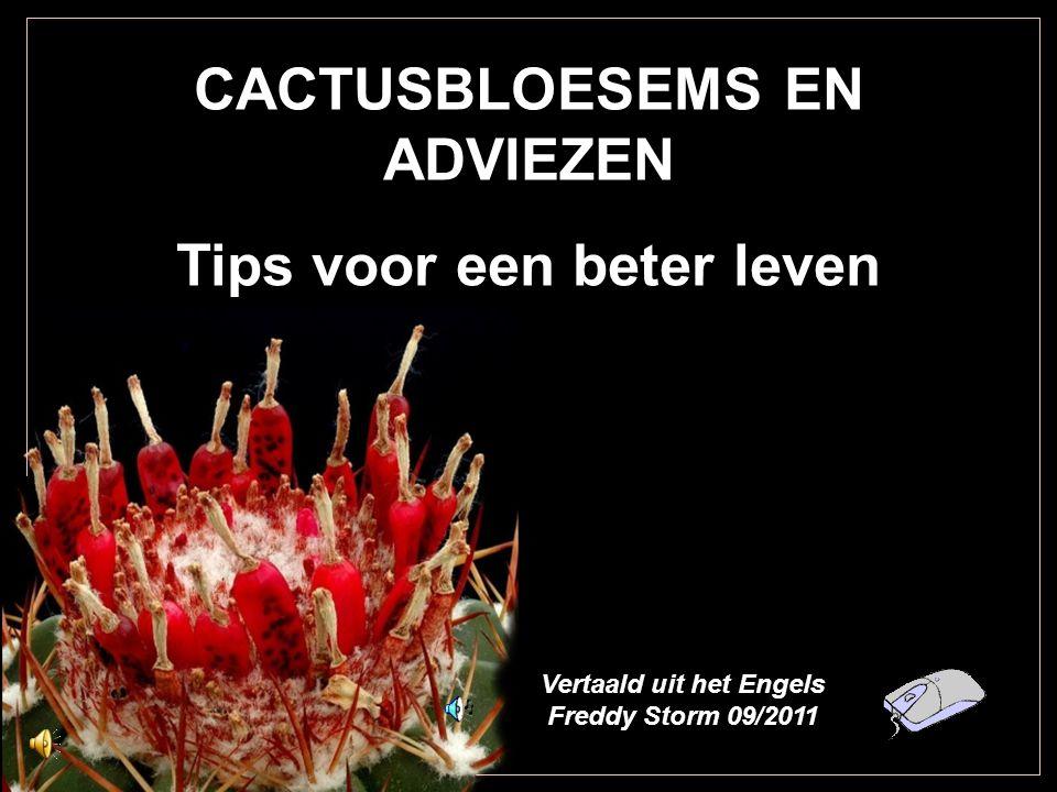 CACTUSBLOESEMS EN ADVIEZEN Tips voor een beter leven Vertaald uit het Engels Freddy Storm 09/2011