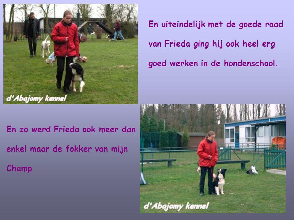En uiteindelijk met de goede raad van Frieda ging hij ook heel erg goed werken in de hondenschool. En zo werd Frieda ook meer dan enkel maar de fokker