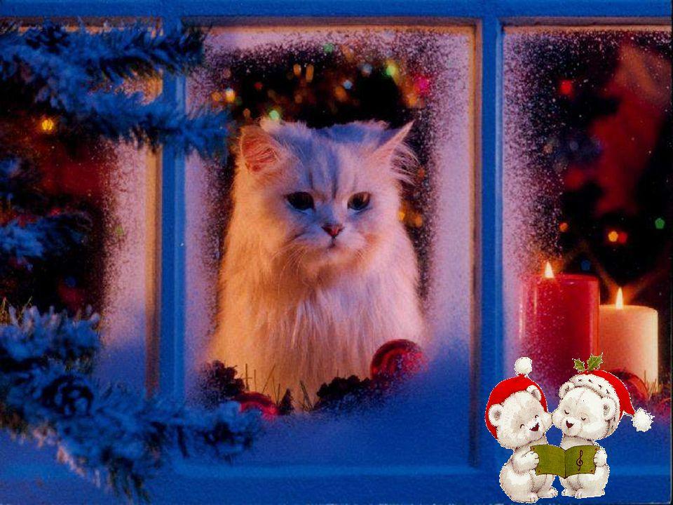 Van alle pakjes onder de kerstboom Is vriendschap het mooiste geschenk