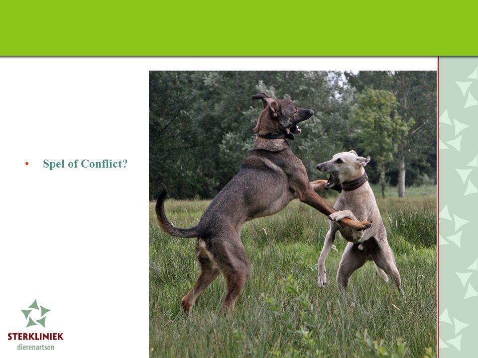•Spel of Conflict?