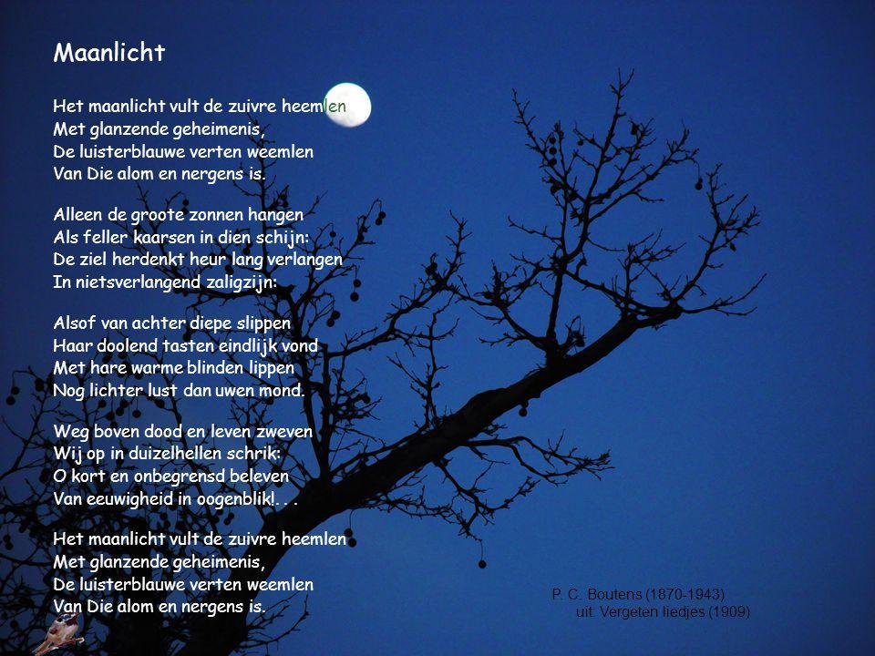 Maanlicht Het maanlicht vult de zuivre heemlen Met glanzende geheimenis, De luisterblauwe verten weemlen Van Die alom en nergens is. Alleen de groote