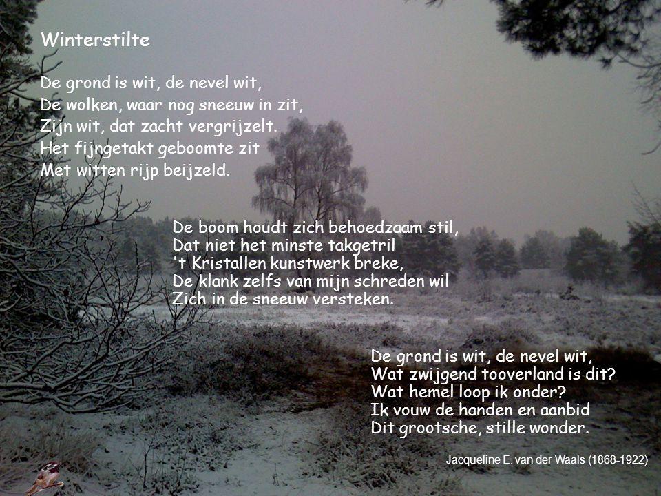 Winterstilte De grond is wit, de nevel wit, De wolken, waar nog sneeuw in zit, Zijn wit, dat zacht vergrijzelt. Het fijngetakt geboomte zit Met witten