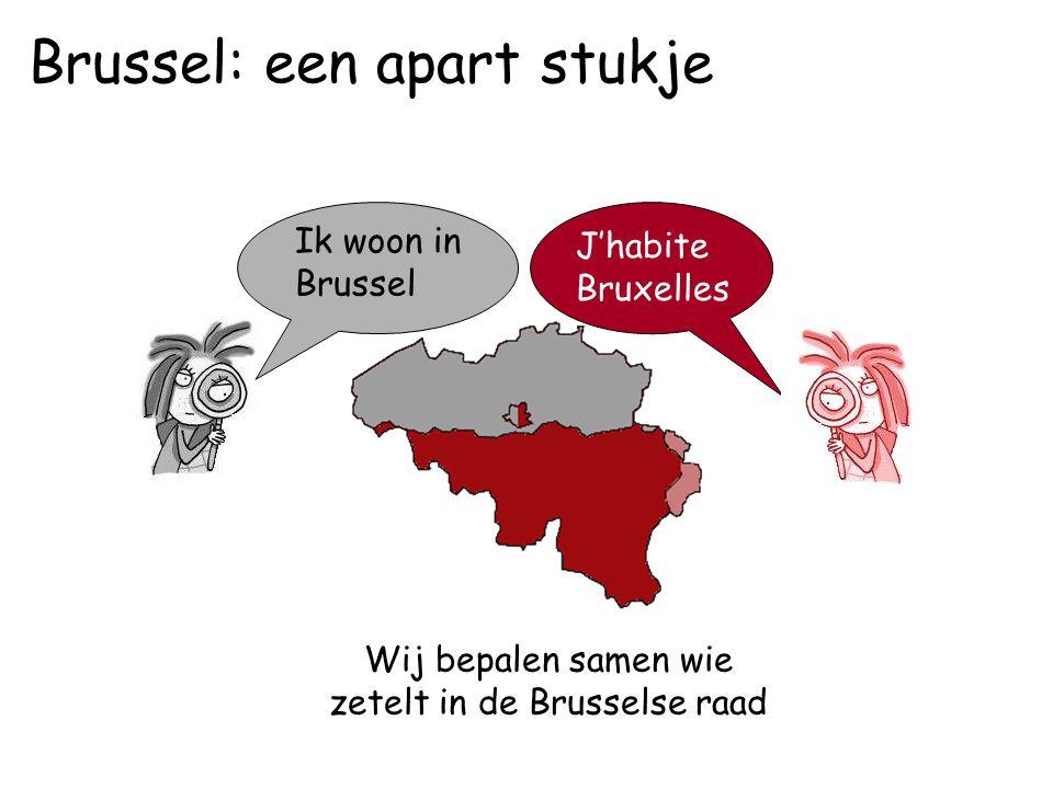 Wij bepalen samen wie zetelt in de Brusselse raad Ik woon in Brussel J'habite Bruxelles Brussel: een apart stukje