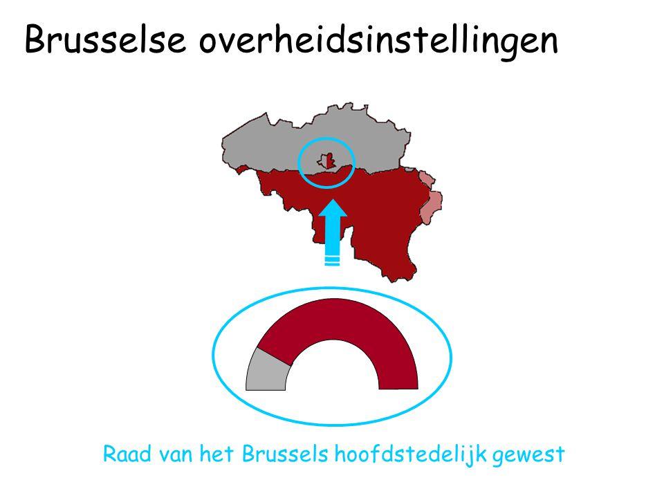 Raad van het Brussels hoofdstedelijk gewest Brusselse overheidsinstellingen