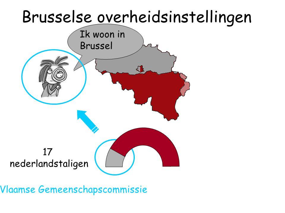 17 nederlandstaligen Ik woon in Brussel Vlaamse Gemeenschapscommissie Brusselse overheidsinstellingen