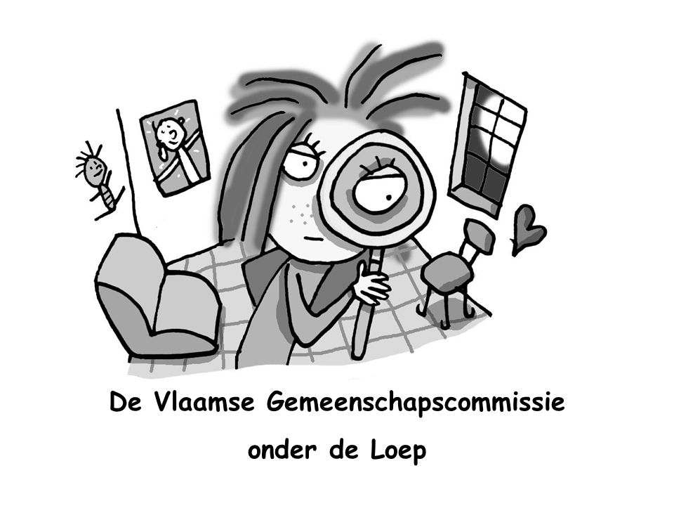 De Vlaamse Gemeenschapscommissie onder de Loep