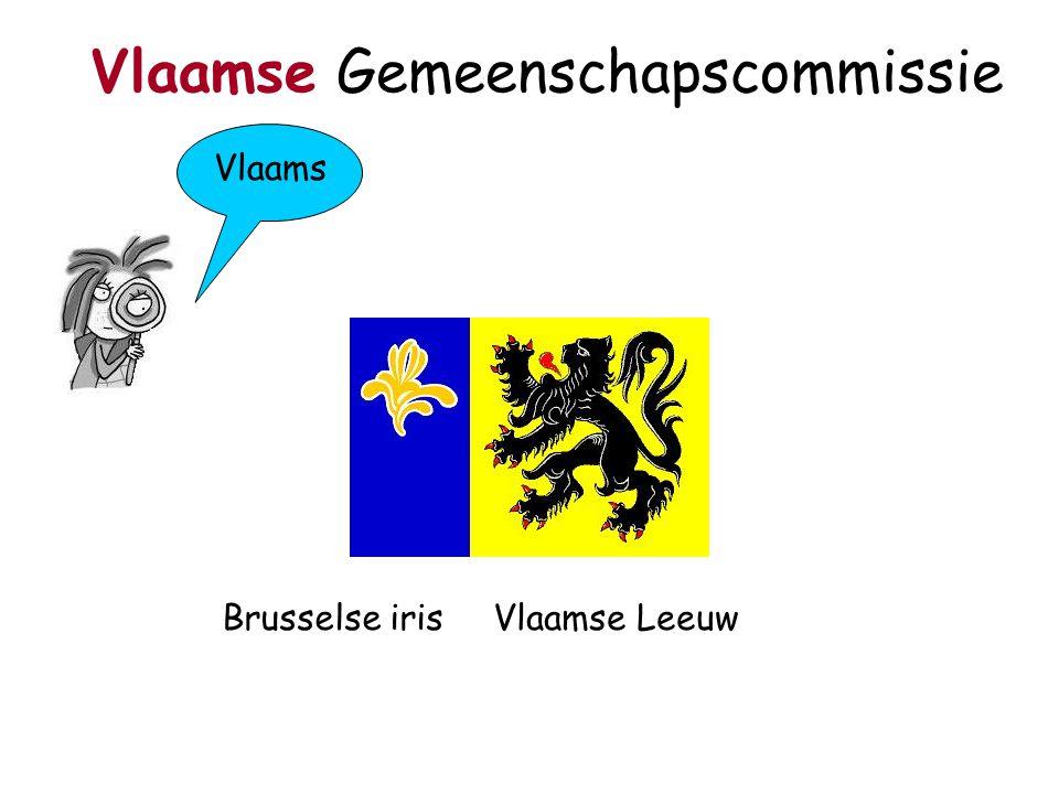 Vlaams Vlaamse Gemeenschapscommissie Brusselse irisVlaamse Leeuw