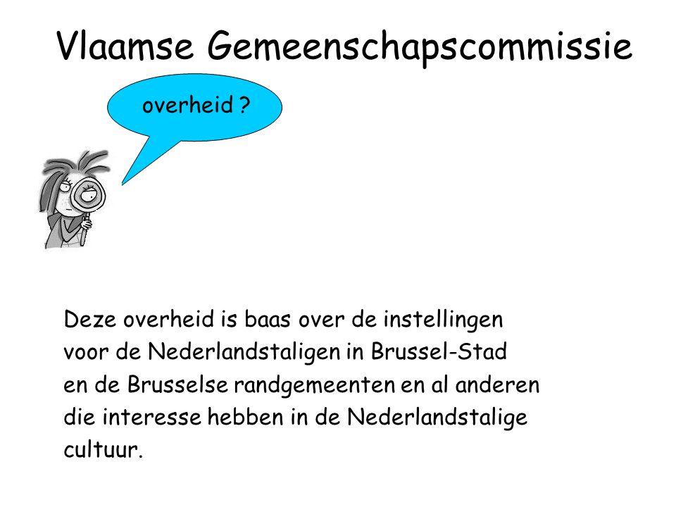 overheid ? Deze overheid is baas over de instellingen voor de Nederlandstaligen in Brussel-Stad en de Brusselse randgemeenten en al anderen die intere
