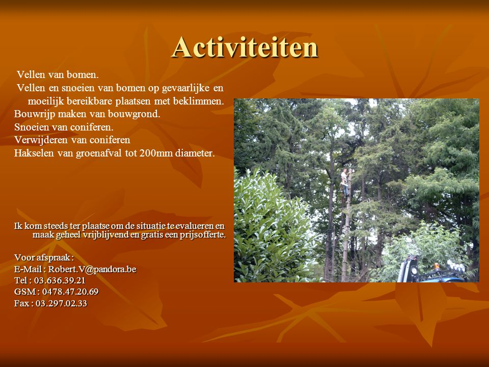 Activiteiten Vellen van bomen.