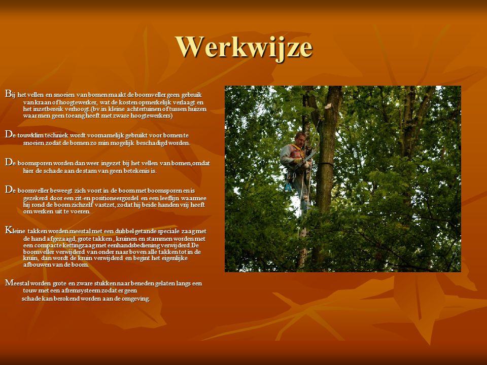 Werkwijze B ij het vellen en snoeien van bomen maakt de boomveller geen gebruik van kraan of hoogtewerker, wat de kosten opmerkelijk verlaagt en het inzetbereik verhoogt.(bv.in kleine achtertuinen of tussen huizen waar men geen toeang heeft met zware hoogtewerkers) D e touwklim techniek wordt voornamelijk gebruikt voor bomen te snoeien zodat de bomen zo min mogelijk beschadigd worden.