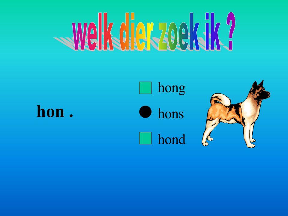 hon. hong hons hond