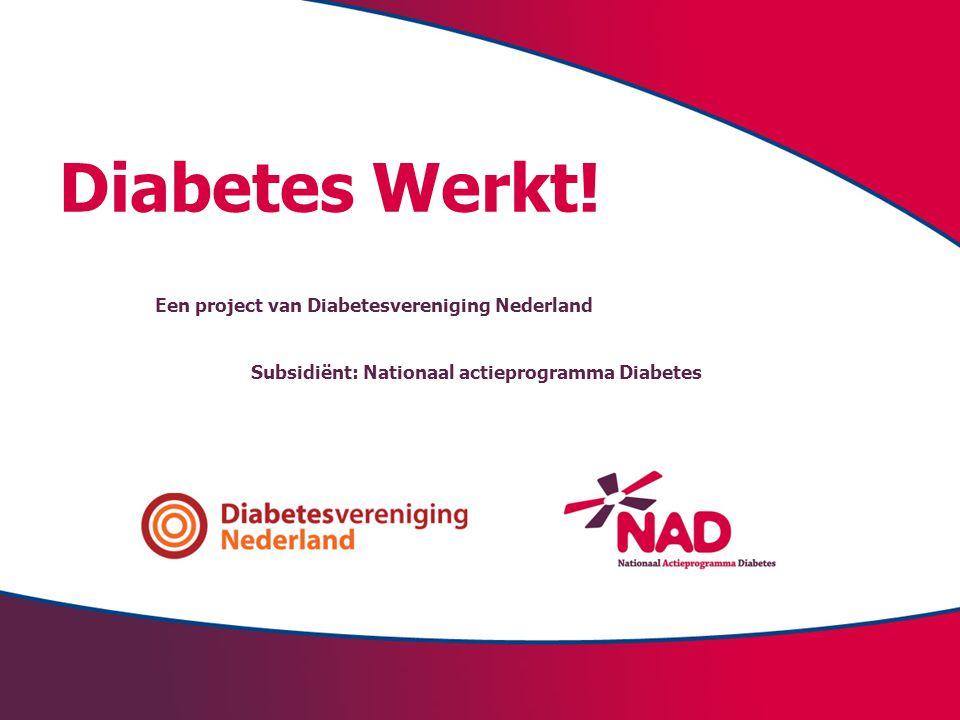 Diabetes Werkt! Een project van Diabetesvereniging Nederland Subsidiënt: Nationaal actieprogramma Diabetes
