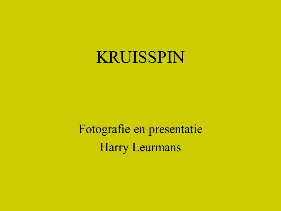 KRUISSPIN Fotografie en presentatie Harry Leurmans